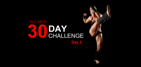 30 Day Workout Challenge – Day 2
