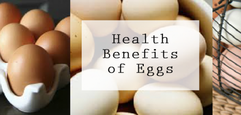 Eggs Pack Protein & Build Muscle