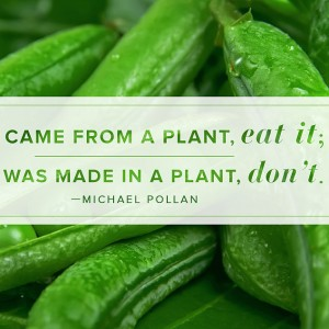 Michael Pollan quote 2